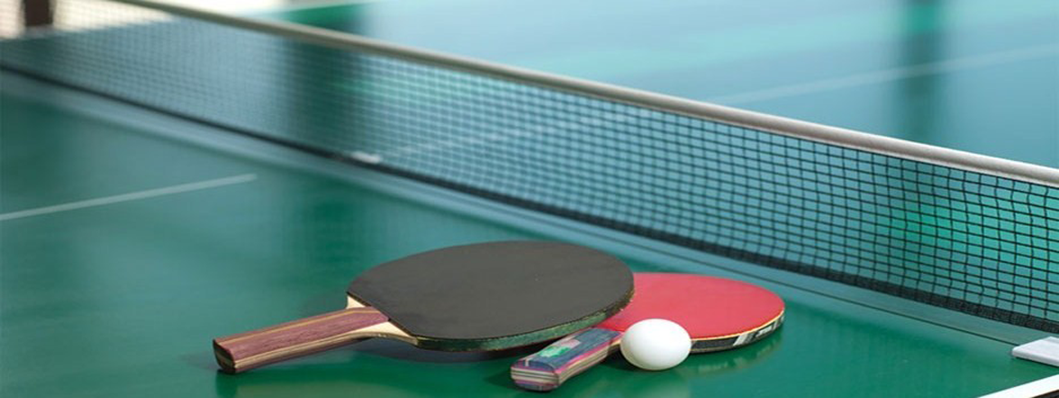 vtable tennis table